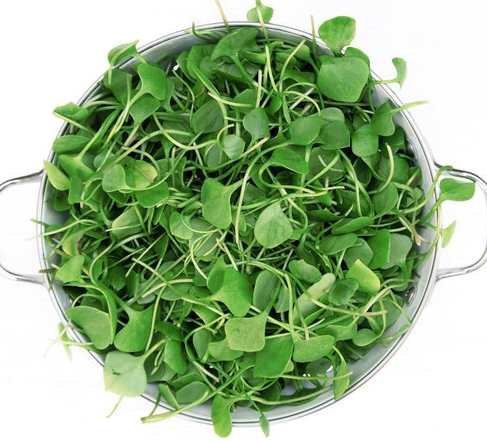 bowl full of fresh watercress